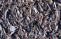 Brown Chip Mulch